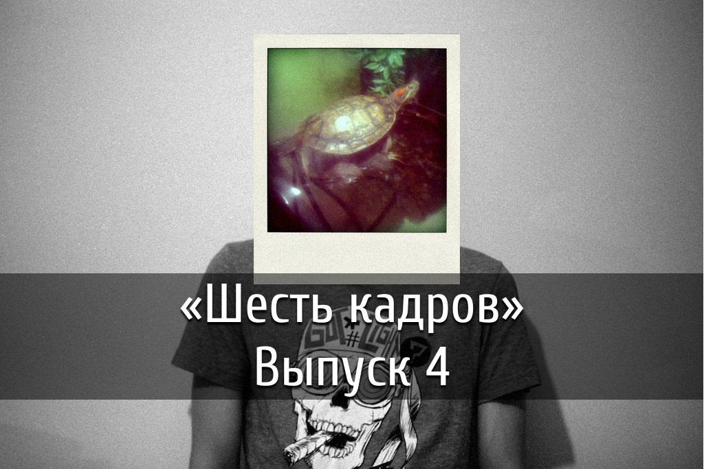 poster-kadry-6-4